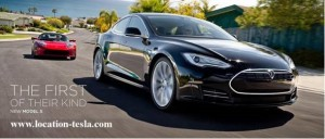 Location TESLA parrtenaire blue2bgreen - LOVEVE